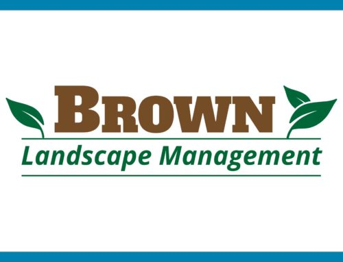 Brown Landscape Management