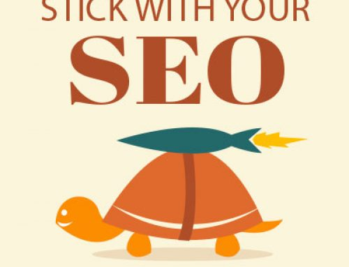 Be the turtle in 2019: SEO is a long-term investment with a great payoff